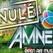 Amnezik Festival 2015 crowdfunding