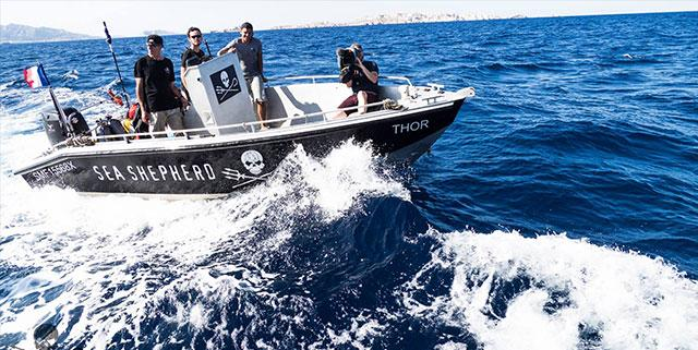 Sea Shepherd Marseille