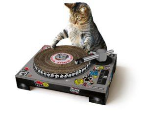 Chat grattoir platines