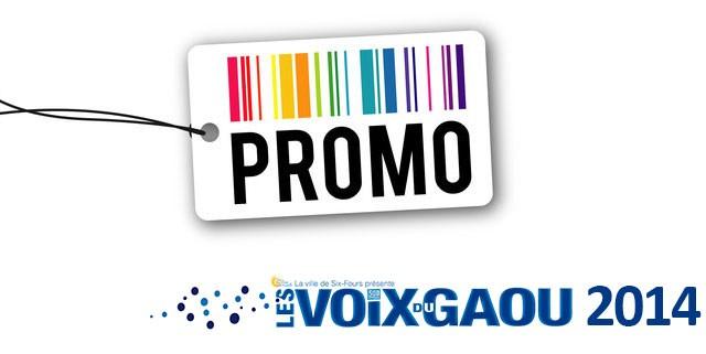 Promo Voix du Gaou 2014