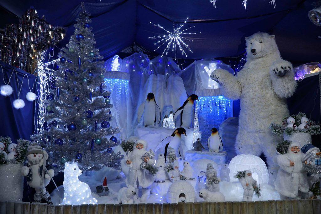 CONCOURS : C'est Noël, je vous offre 100 € de bons d'achat chez la jardinerie Vegetalis à La Londe !